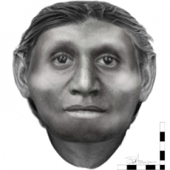 Hobbit Homo Floresiensis COSMOS Science Magazine