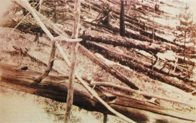 800px-Tunguska_event_fallen_trees-580x364