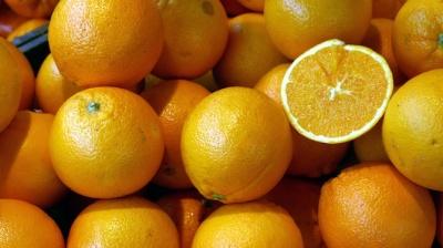 Oranges-Vitamin-C-tuberculosis