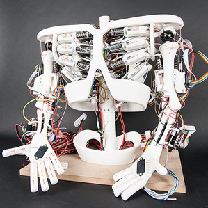 roboy.tendon.robotx299