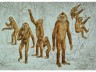 reconstruccio_oreopithecus_icp