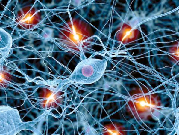 Stem-Cell-Innovation-Could-Treat-Parkinson's